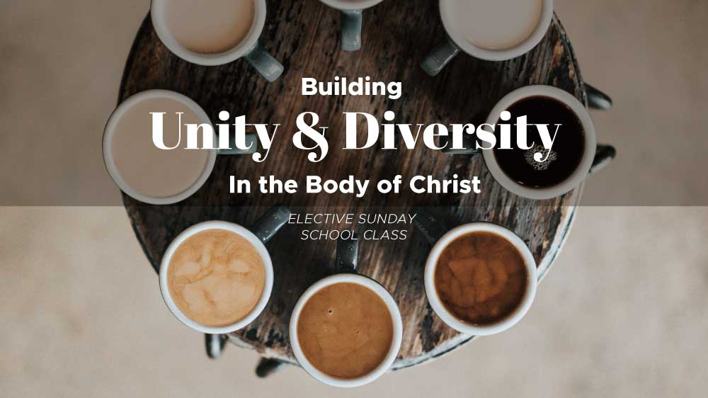 Building Unity & Diversity in the Body of Christ